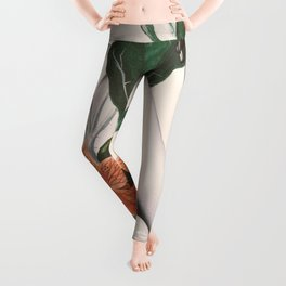 natural beauty-collage 2 Leggings