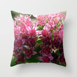 Sedum Flowers and the Ant Throw Pillow