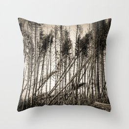 Fallen Trees After Storm Victoria February 2020 Möhne Forest sepia Throw Pillow