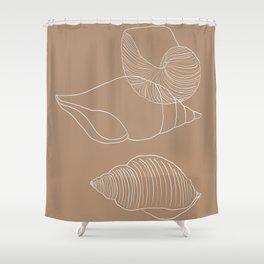 Seashells #1 Shower Curtain