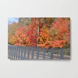 Orange Fallscape Metal Print