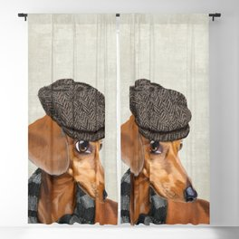 Elegant Mr. Dachshund Blackout Curtain