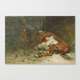 MAUVE, ANTON 1838 Zaandam - 1888   Calf in the Barn Canvas Print