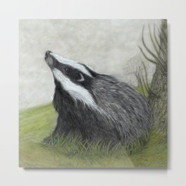 Misty Morning Badger Metal Print