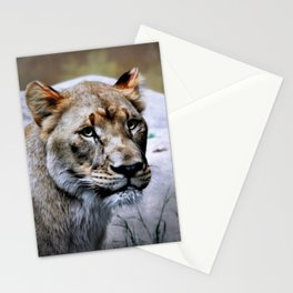 The LIONESS Stationery Cards