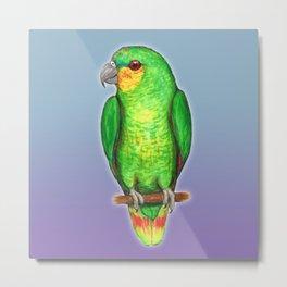 Orange winged amazon parrot Metal Print