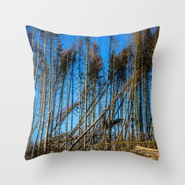 Fallen Trees After Storm Victoria February 2020 Möhne Forest Throw Pillow