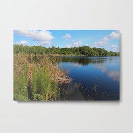 Gator Lake I Metal Print