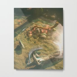 Day 0685 /// Six fishies Metal Print