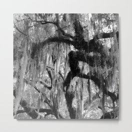 Oak and Moss in Black and White, Study 1 Metal Print