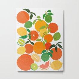 Citrus Harvest Metal Print