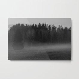 Foggy afternoon Metal Print