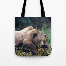 Magnificent Huge Adult Grizzly Bear Sleeping At Seashore Ultra HD Tote Bag