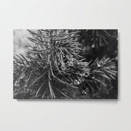 Exmoor VII Metal Print