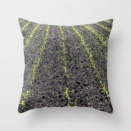 Corn Field 8 Throw Pillow