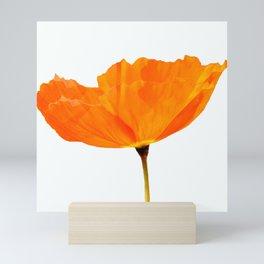 One And Only - Orange Poppy White Background #decor #society6 #buyart Mini Art Print