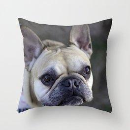 Rufus 2 Throw Pillow