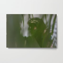 [4] Dancing people, dance, shadows, hands and plants, blurred photography, artistic, forest, yoga Metal Print