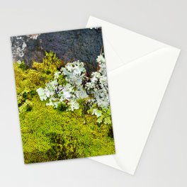 Tree Bark with Lichen#8 Stationery Cards