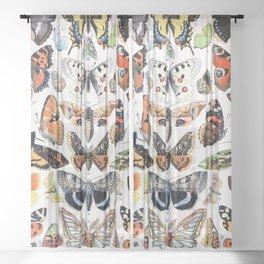 Adolphe Millot - Papillons A - French vintage poster Sheer Curtain