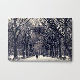 Central Park in Black & White Metal Print