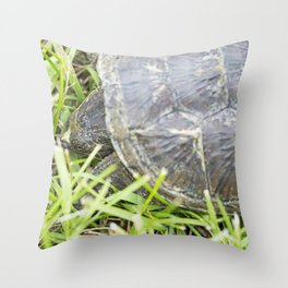 Snapping Turtle 4 Throw Pillow