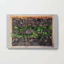 Coal and Leaves 01 Metal Print