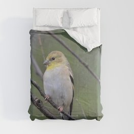 yellow finch Comforters