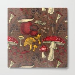 Wild mushrooms on brown  Metal Print