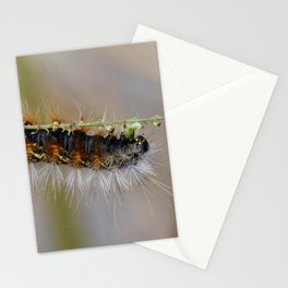 Hang on There Fuzzy Caterpillar 1 Stationery Cards