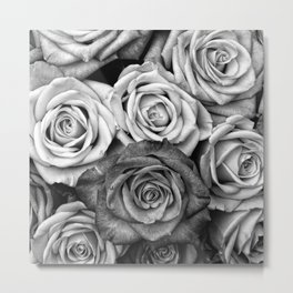 The Roses (Black and White) Metal Print