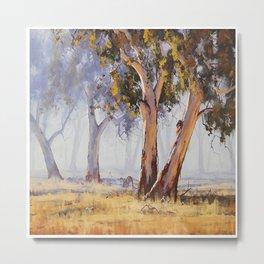 Rural Australia Metal Print