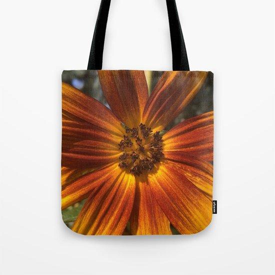 Sunburst Sunflower by flowerlover007