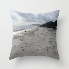 Forgotten Coast Throw Pillow