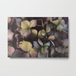Pale purple hydrangea pattern Metal Print