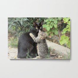 Mommy and me Kitten and Mother Cat Portrait Metal Print