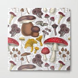 Wild mushrooms Metal Print