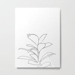 eucalyptus Metal Print