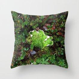 Lichen Light Throw Pillow