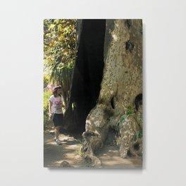 Fairy in a Tree! Metal Print