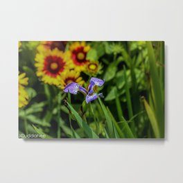 Flowers at the Buffalo Marina  Metal Print