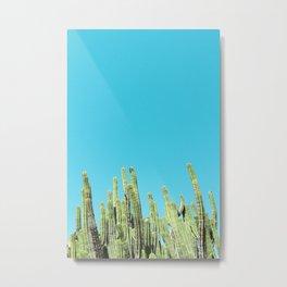 Desert Cactus Reaching for the Blue Sky Metal Print