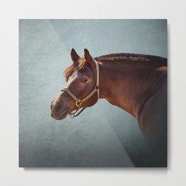 Drawing portrait  horse 11 Metal Print
