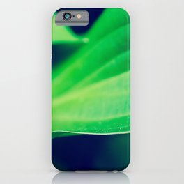 Mellow Hosta Leaves Abstract Botanical / Nature Photograph iPhone Case