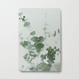 EUCALYPTUS GREEN 2 Metal Print