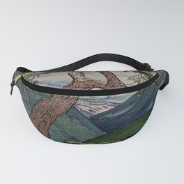 The Downwards Climbing Fanny Pack