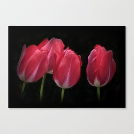 red and beautiful Canvas Print