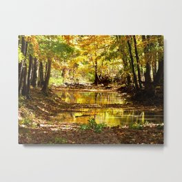 Fall afternoon III Metal Print