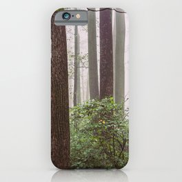 Great Smoky Mountains National Park - Forest Fog Adventure IV iPhone Case