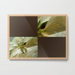 Pale Yellow Poinsettia 1 Blank Q3F0 Metal Print